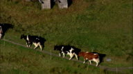 Stonewall Farm And Cattle  - Aerial View - New Hampshire,  Cheshire County,  United States video