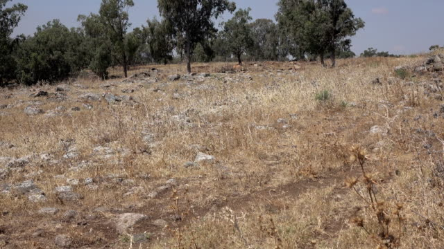 Stony Field Where Roman Road Once Was in Israel video