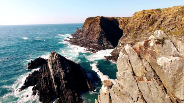 Stork Nest on the picturesque cliffs on the ocean aerial view video