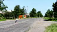 Stork walking on the road video