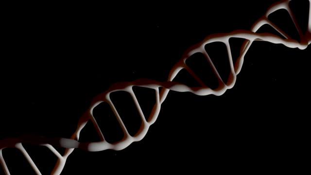 DNA strand. The camera flies around the DNA molecule. Genetic engineering scientific concept. The flying particles. On a black background. 3D animation. video