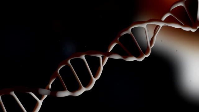 DNA strand. The camera flies around the DNA molecule. Genetic engineering scientific concept. The flying particles. Realistic background. 3D animation. video