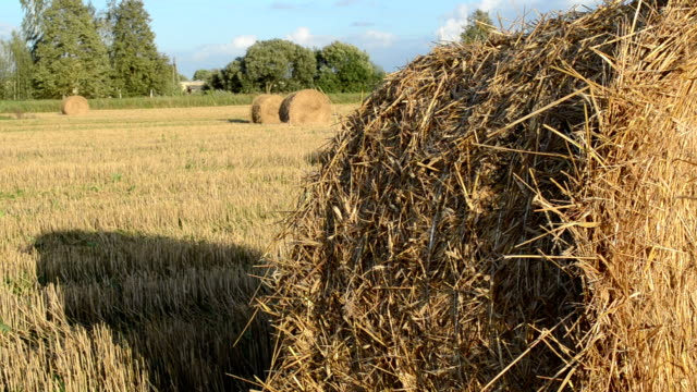 straw bale roll video