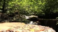 Stream in forest Western Thailand. video