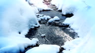 Stream in the forest, winter season. video