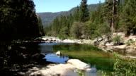 Stream in Yosemite National Park video