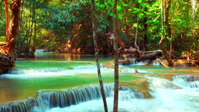 Stream of Waterfall video