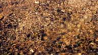 Stream runs through the pebbles on a Sunny day video