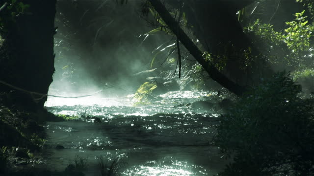 Stream with mist and sun rays -  HD720, NTSC, PAL video