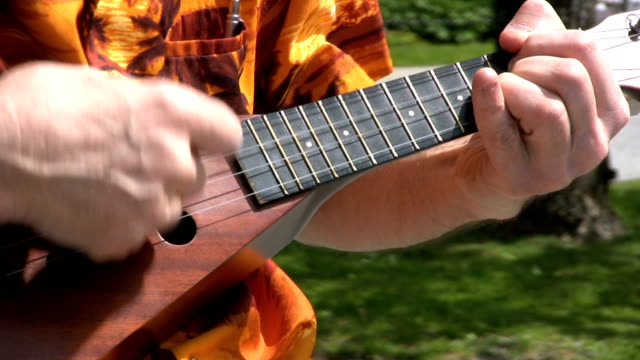 Street Busker Playing Ukelele Slow (HD 1080p30) video