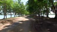Street in the park,Taken by drones video