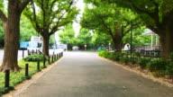Street in Tokyo Japan video