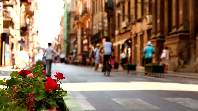 Street of Palermo video