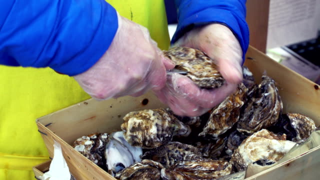 Street seafood market in the city video