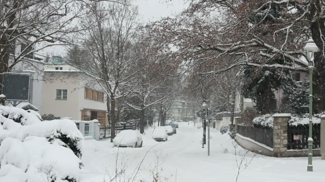 Street with houses in the winter - snow video