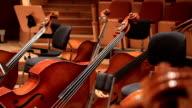 Stringed instruments 2 video