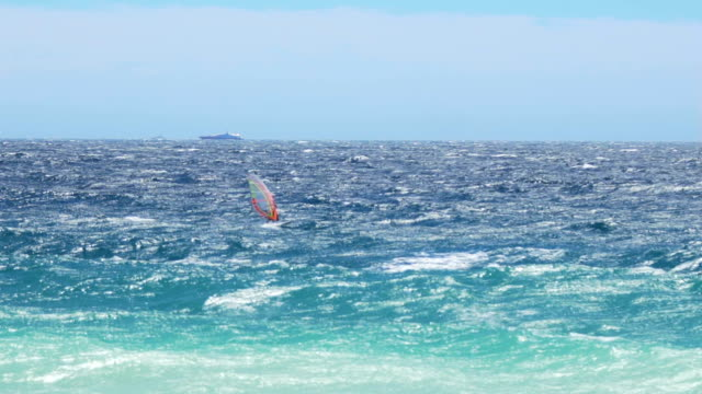 Strong and brave man windsurfing in light blue sea, high speed, extreme sport video