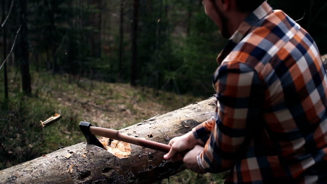 Strong lumberjack in a plaid shirt chopping a big tree with a sharp ax in the woods video