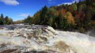 Strong River Current in Autumn Season video