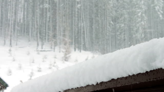 Strong snow comes on the background of Christmas trees and wooden house video