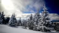 A strong winter sun video