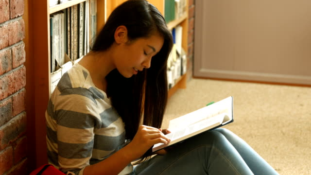 Student reading a book in the library video