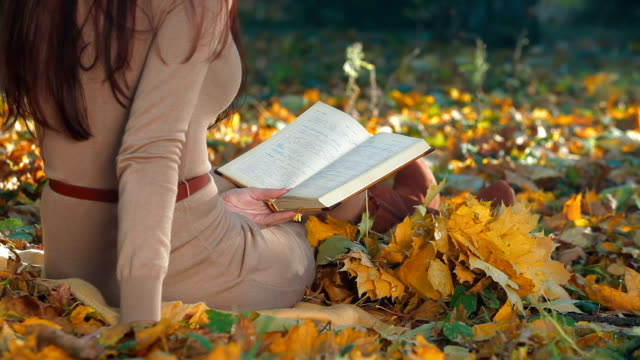 Student Reading Lecture Notes in Autumn Park video