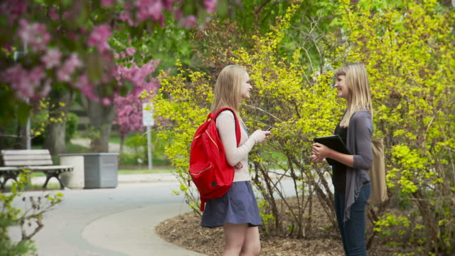 Students chat on campus video