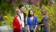 Students chat on university campus video