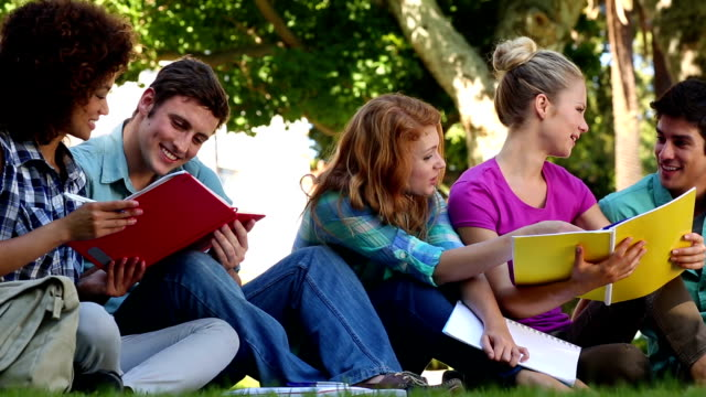 Students sitting on grass and chatting together video