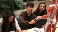 Students studying anatomy together video