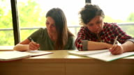Students studying in Classroom video