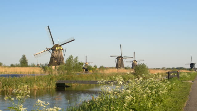 Stunning antique Dutch mills on vast dried grassy field next to big river stream video