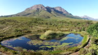 Stunning Fynbos Landscape with a dam Fly Over video
