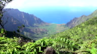 Stunning mountain top views across the jungle valley towards the turquoise ocean video