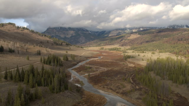 AERIAL Stunning scenery of river valley, pine trees and majestic Rocky mountains video