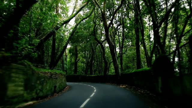 Suburb road video