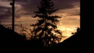 Suburban sunset tree. Timelapse shot. video