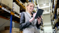 Successful attractive inspector in warehouse video