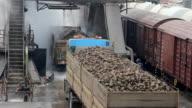 Sugar Factory video