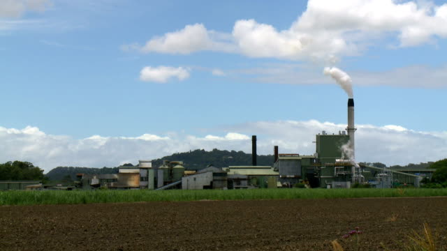 Sugar Mill with Cane Growing in Foreground video