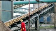 Sugar Refinery Worker video