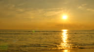 Summer Beach at Sunset Silhouette video