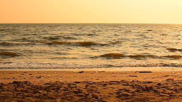 Summer Beach at Sunset video