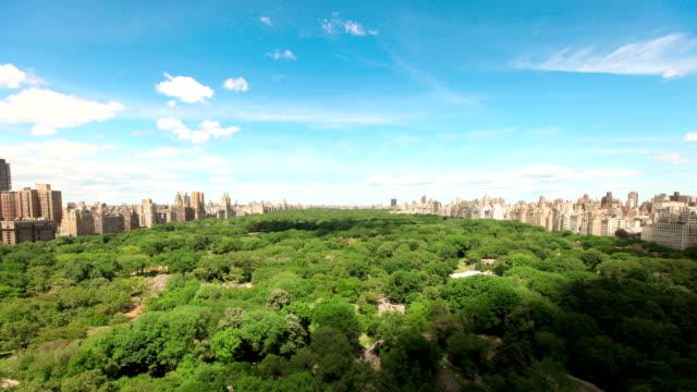 Summer clouds over Central park - timelapse video