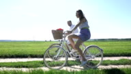 Summer field classical bicycling, slow motion steadicam shot video