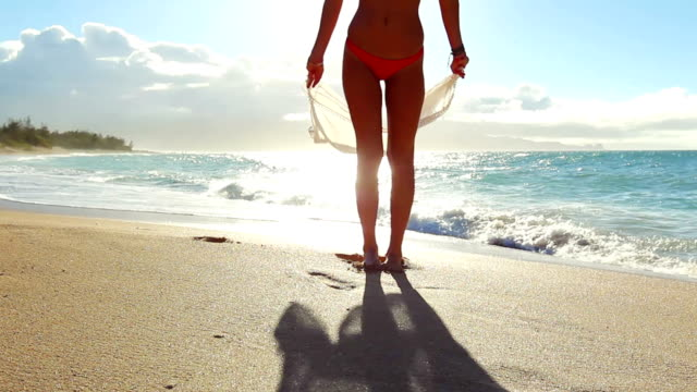 Summer Fun Beach Lifestyle video