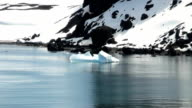 Summer in Antarctica video