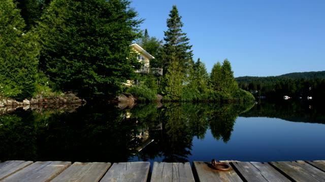 Summer lake lanscape video