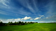 Summer landscape with green field video